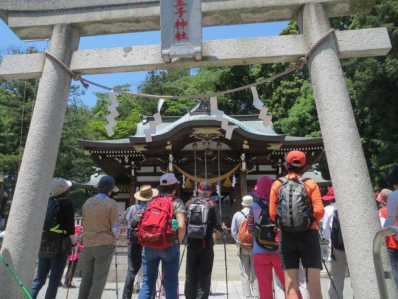 王子神社「王子秋月」長津田の鎮守 市が指定した銘木もあります
