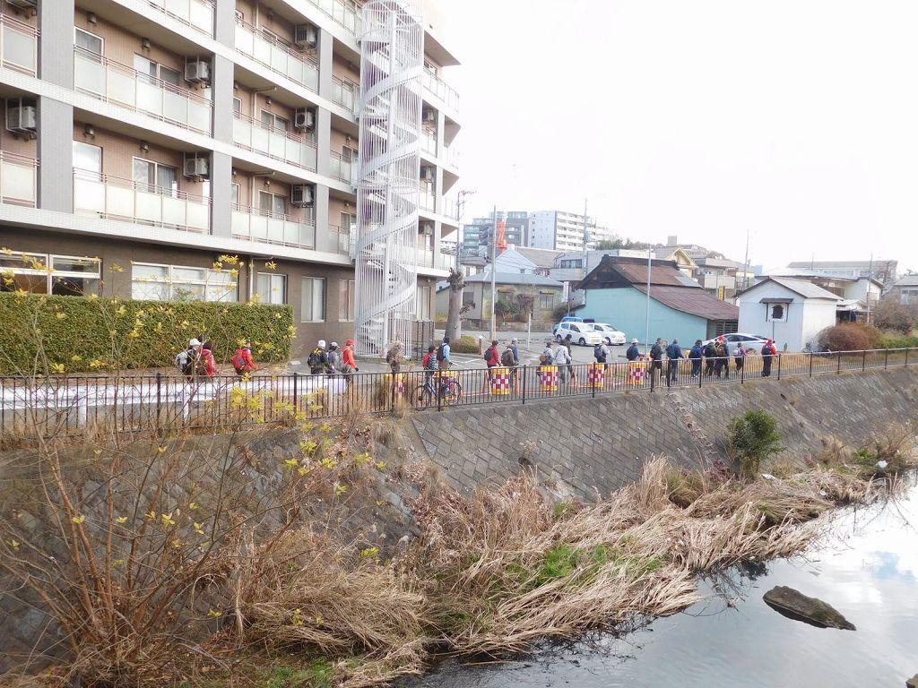 早渕川沿いをウォーキング この道も人通りが少ない