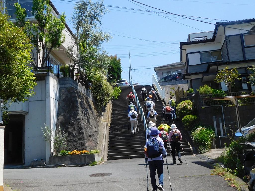 御馴染みの階段を上ります