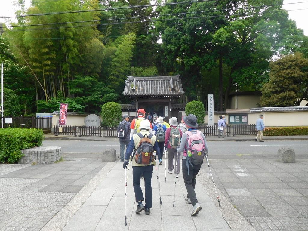 正覚寺到着10分間の花観賞です