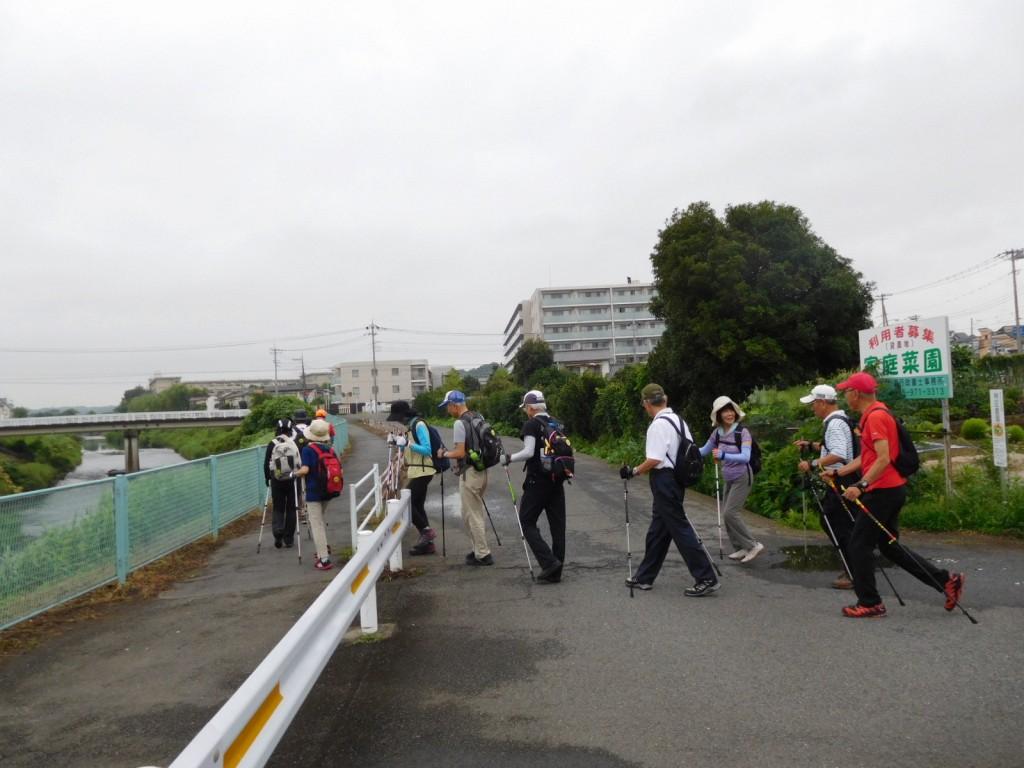 鶴見川へ出て宮前橋までウォーキングです