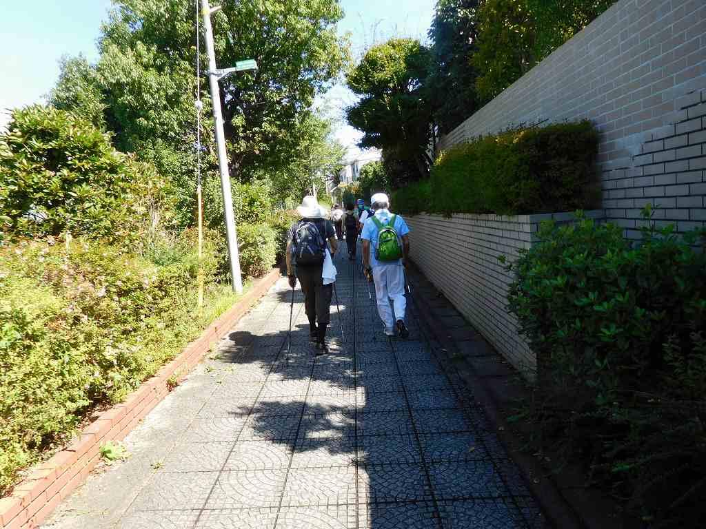 荏田西遊歩道を江田駅目指してウォーキング