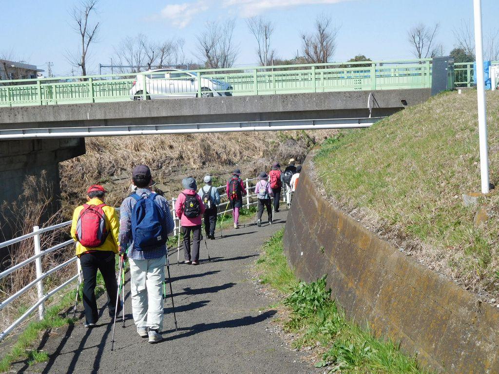 宮前橋下の遊歩道を歩きます