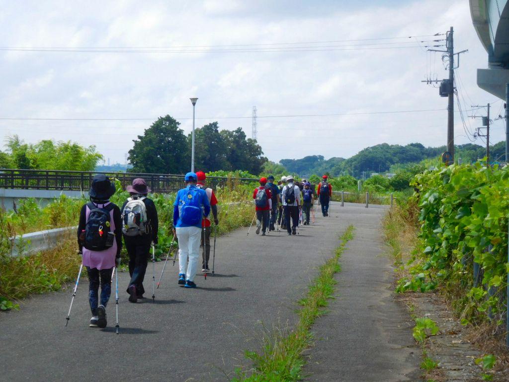 鶴見川沿いを歩く一般・二班