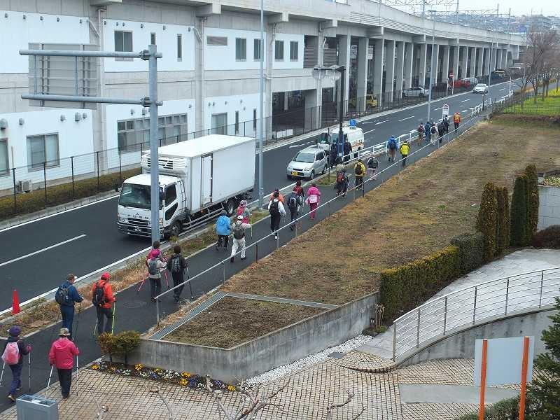 川和駅横を菜の花畠に向かってウォーキング