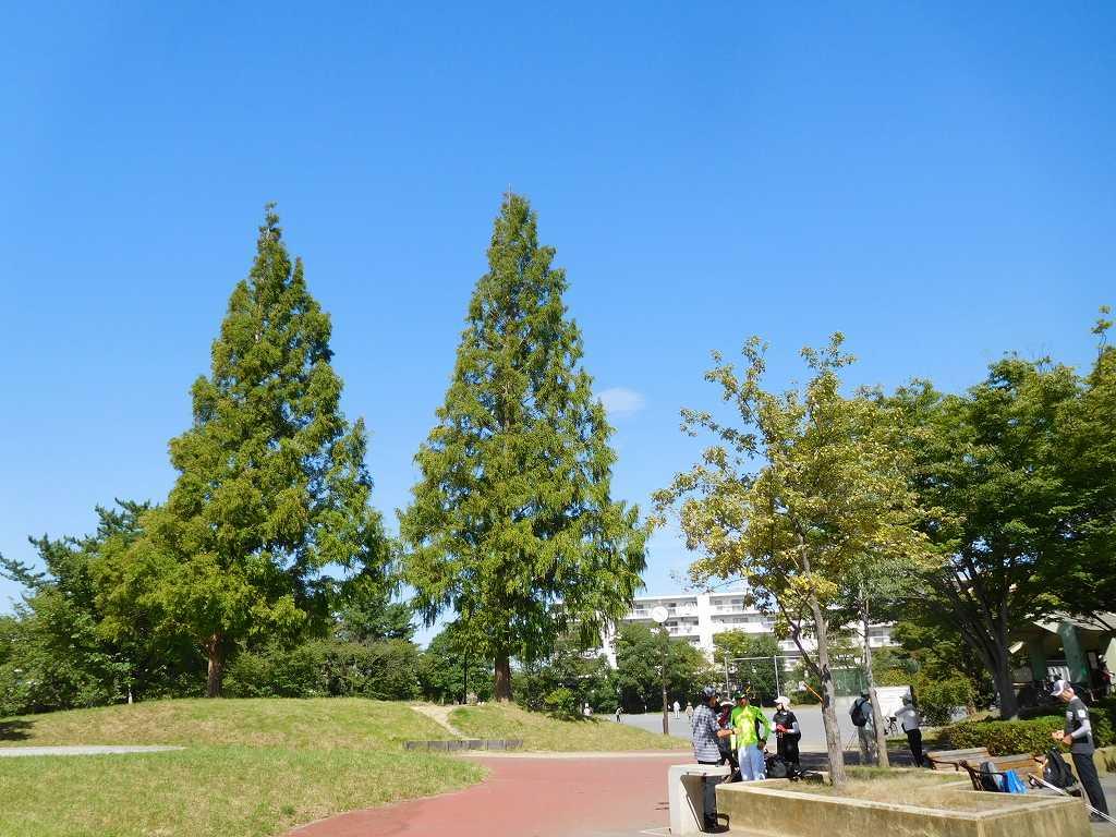 すすきの公園で休憩 青空が綺麗ですね