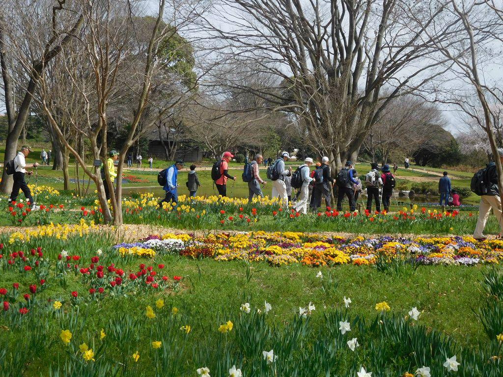 渓流広場の花の横を歩く