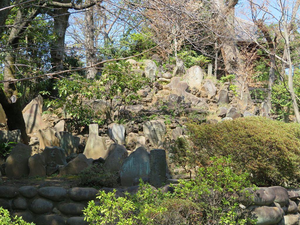 お寺には珍しい富士塚(音羽富士)を登る