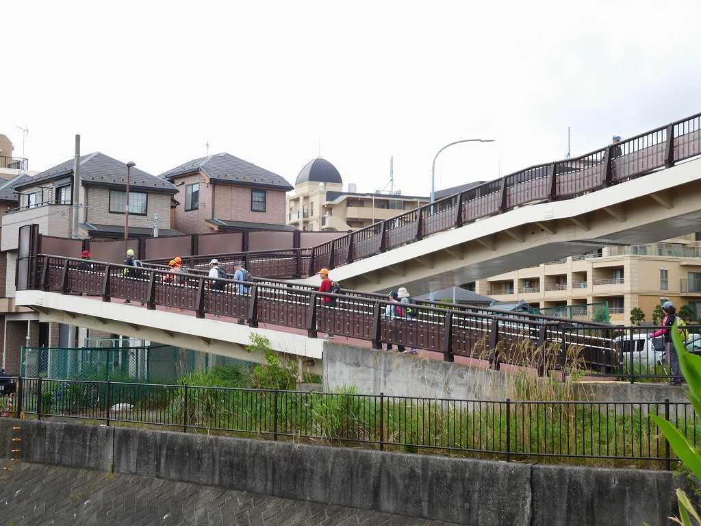国道246号線に架かる歩道橋を渡って 観福寺を目指す