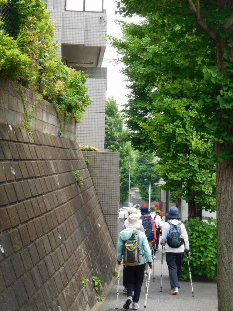 千草台住宅地を歩く