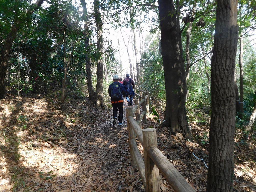 北八朔公園の樹林を歩く