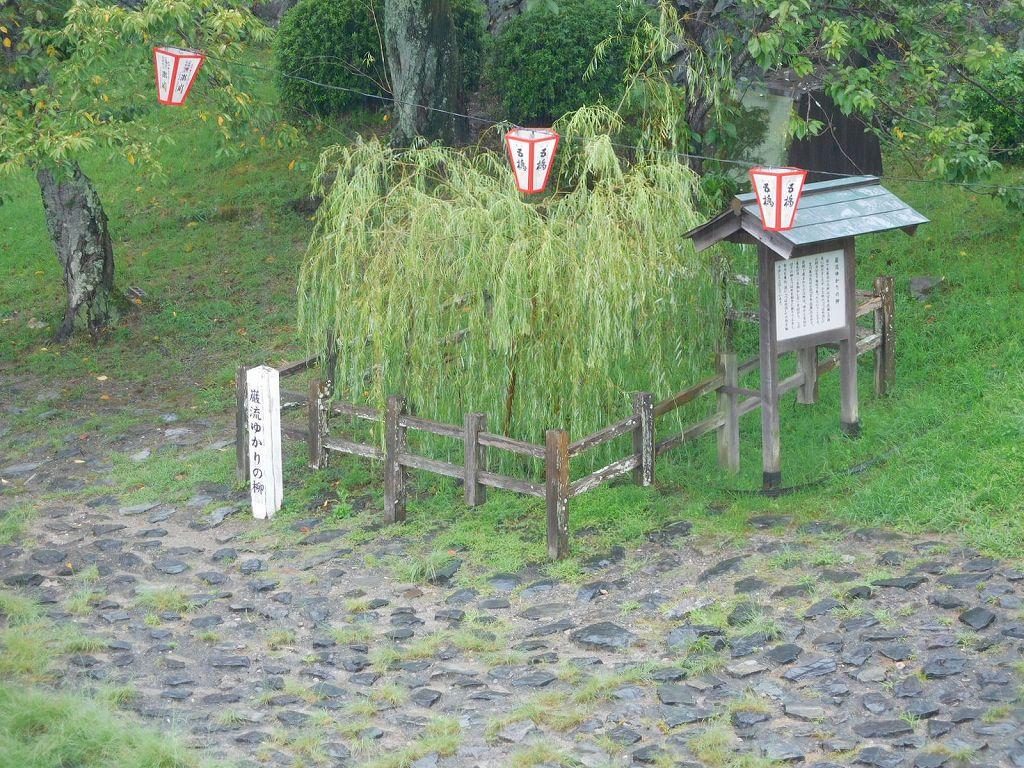 佐々木小次郎はこの柳の枝が燕を打つのを見て「燕返し」の術を会得した