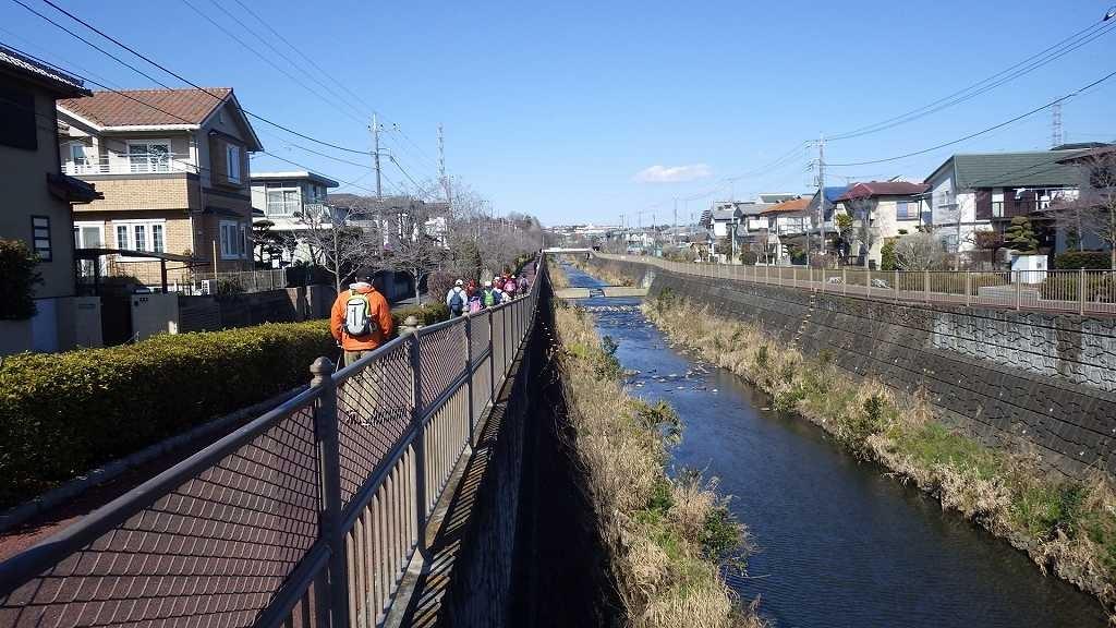 恩田川沿いをウォーキング途中 翡翠撮りのカメラマンとも会いました