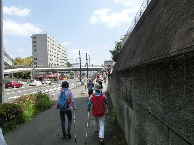 江田駅休憩場所を目指して歩道橋を渡る、早咲きの桜が有名な場所