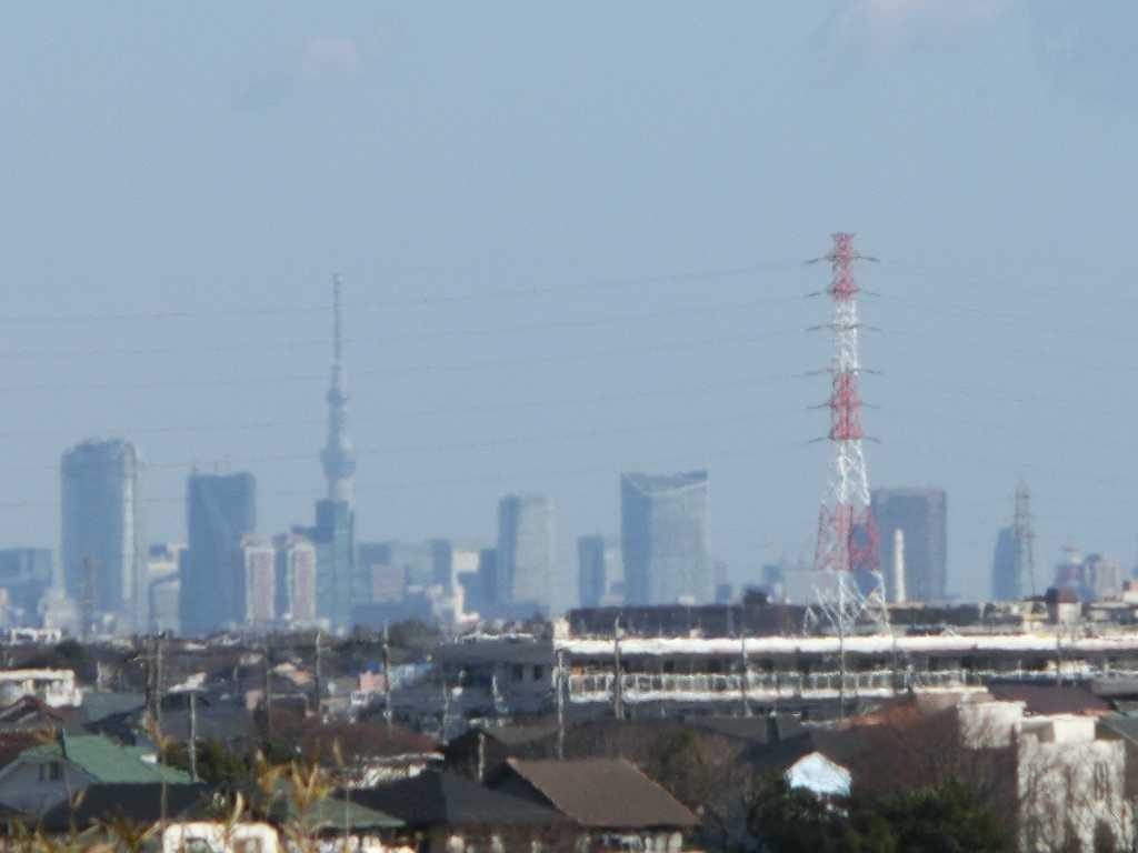 都筑アルプスでは「東京スカイツリー」が見える