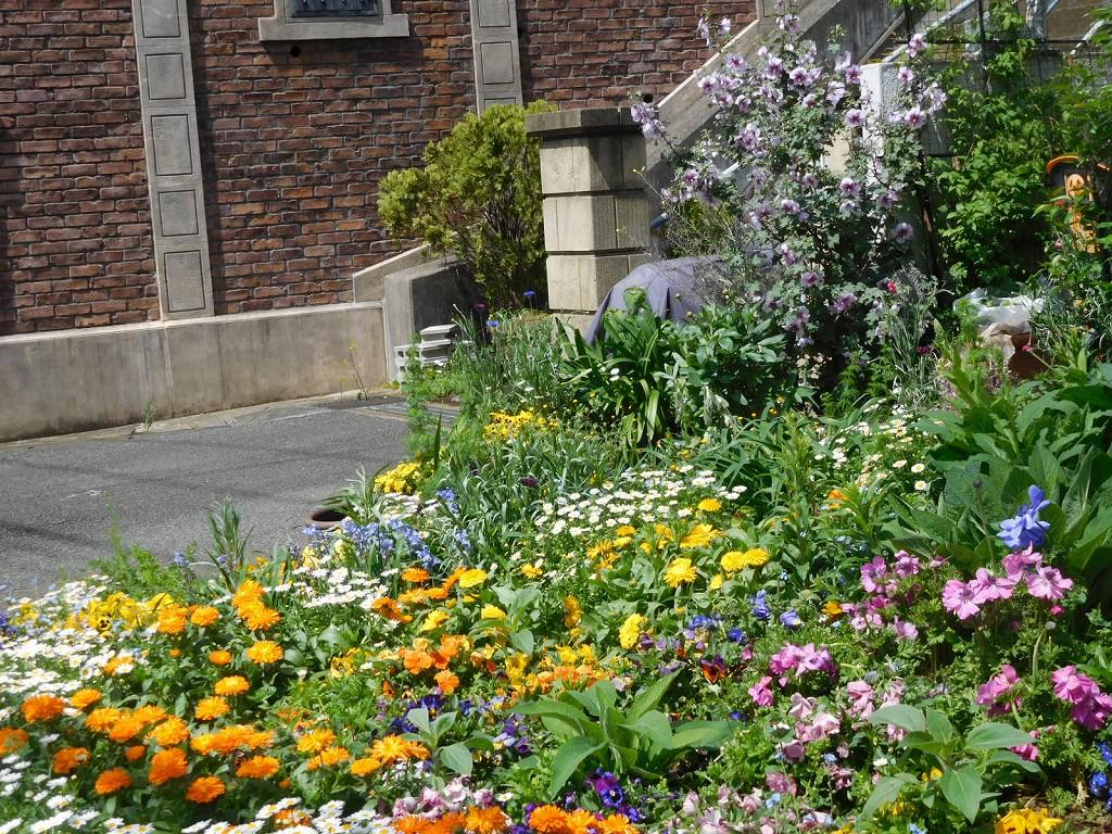 花壇に花一杯のお宅 花の種類が豊富な御宅です