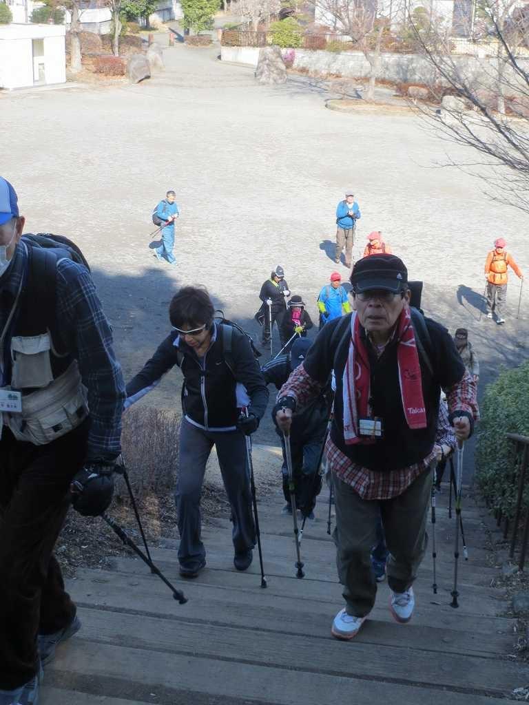 観梅地に移動、急階段を登れば観梅場所