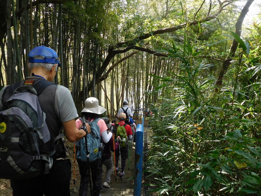 京都の嵯峨野、伊豆の修繕寺を想像させる竹林のコースです