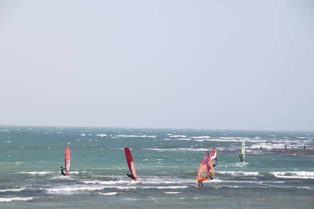ウィンドーサーフィンを楽しむ人々