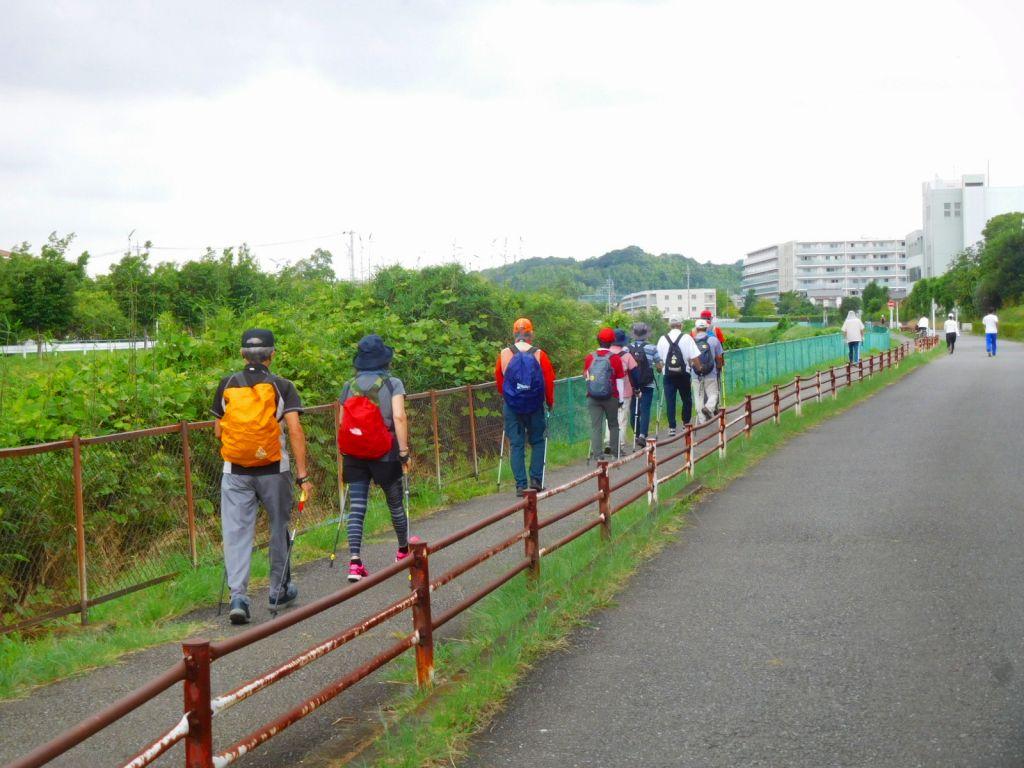 本日はランナー・チャリダーも少なく歩きやすい鶴見川です