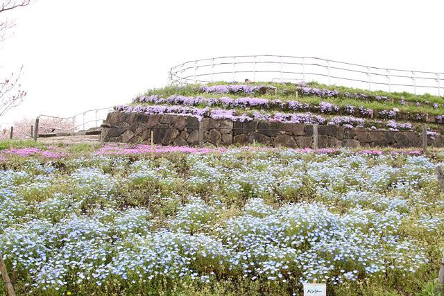 相模川河川敷の三川公園