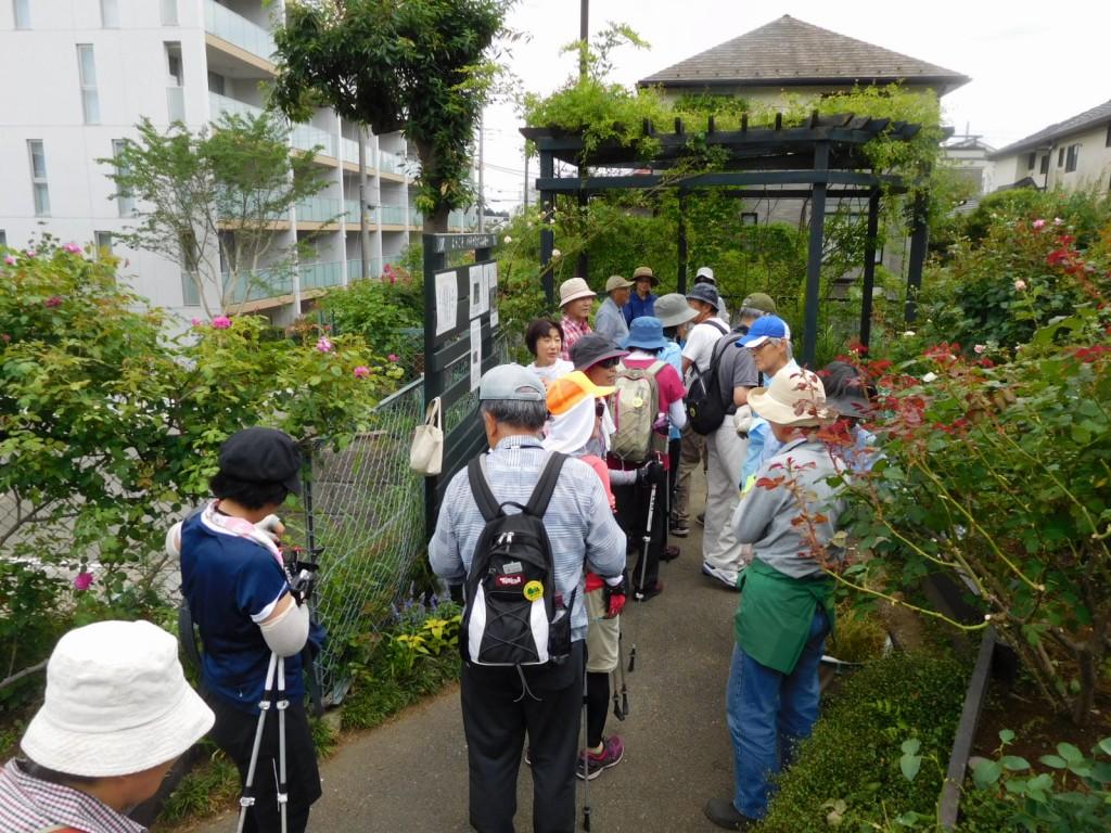 進んでみたら太陽公園でボランティアしている人達が沢山来ておられました