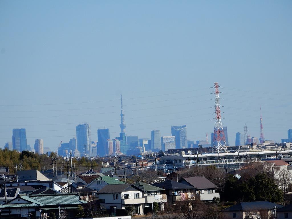 スカイツリー・東京タワーと綺麗に見えます