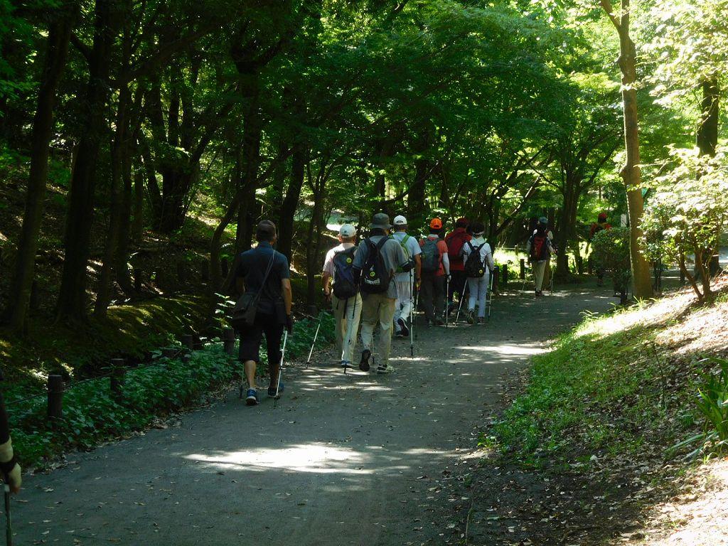 ささぶねの道を歩く 木陰が多くて歩きやすいです