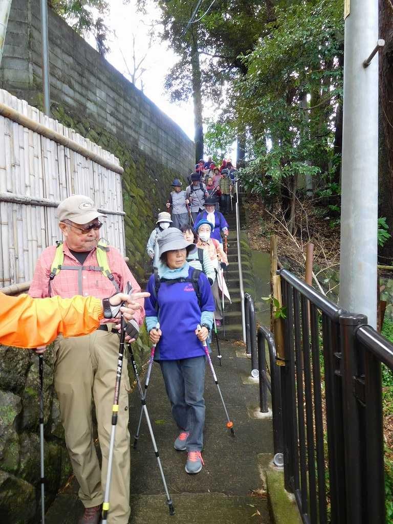 通路には小田原市職員の手で活けられた一輪挿しの花も見える