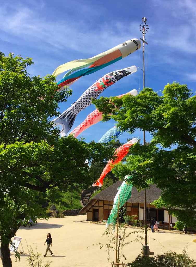 昭和記念公園 鯉のぼり