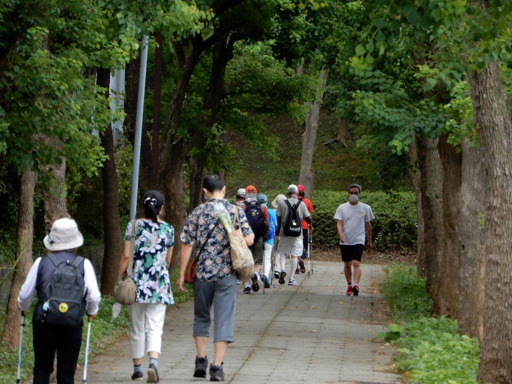 荏田南小・中校横の遊歩道を歩く