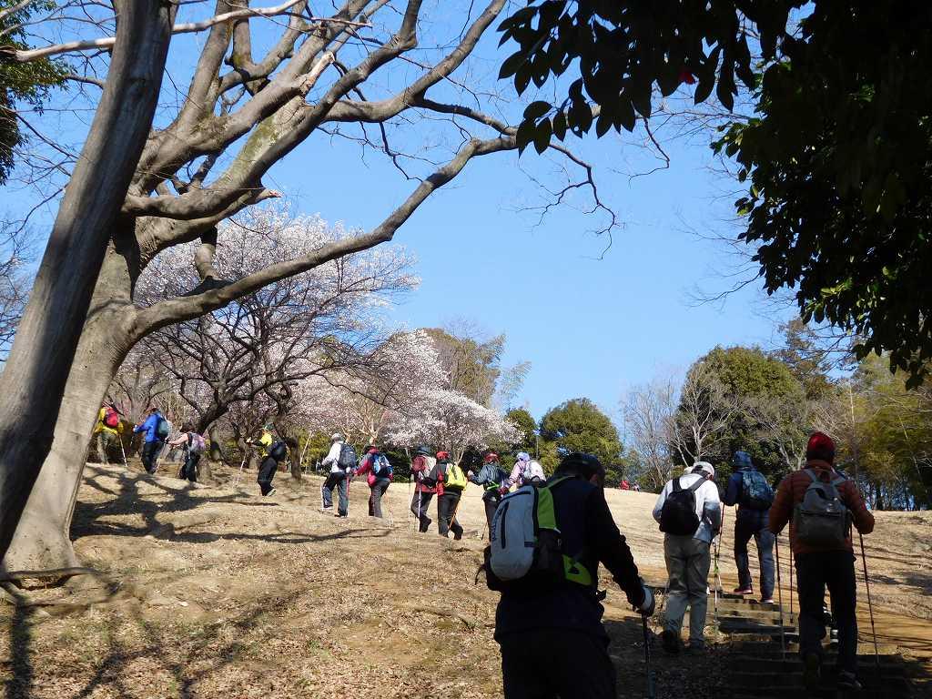 折田不動公園の坂道を登る