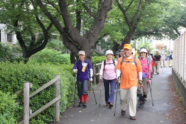 二ケ領用水 傍らをウォーキング桜名並木の木陰で歩きよい