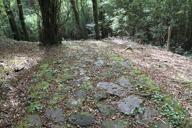 苔蒸した石畳も見えるコースです