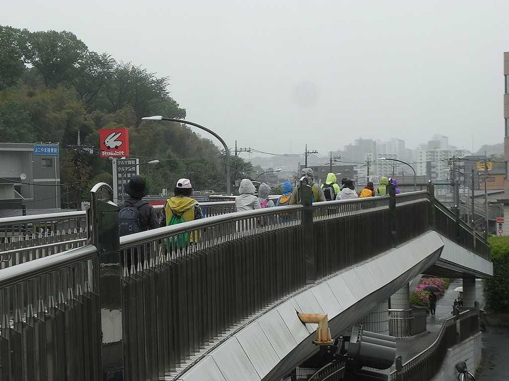 江田駅前歩道橋をウォーキング霧雨はまだ降っています残念!!