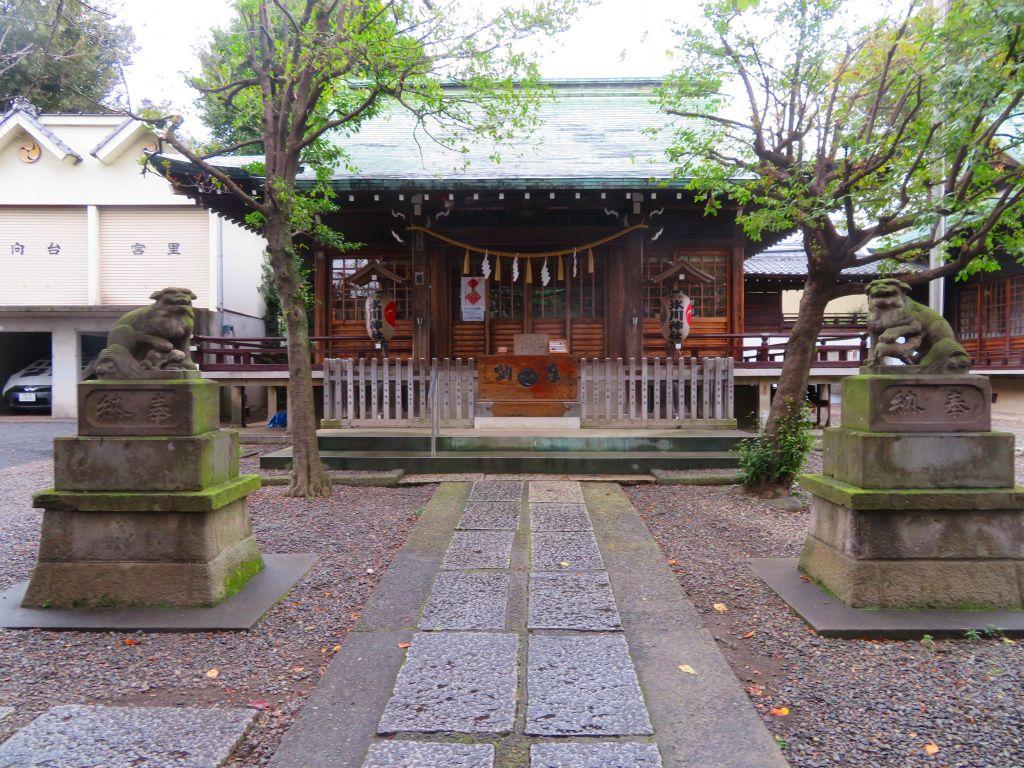 途中、氷川神社(狛犬に注目)