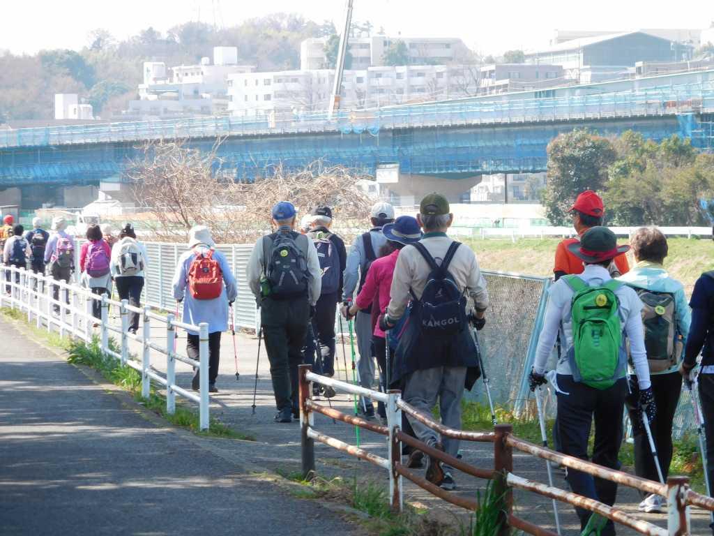 鶴見川沿いを川和町へ向けて歩く