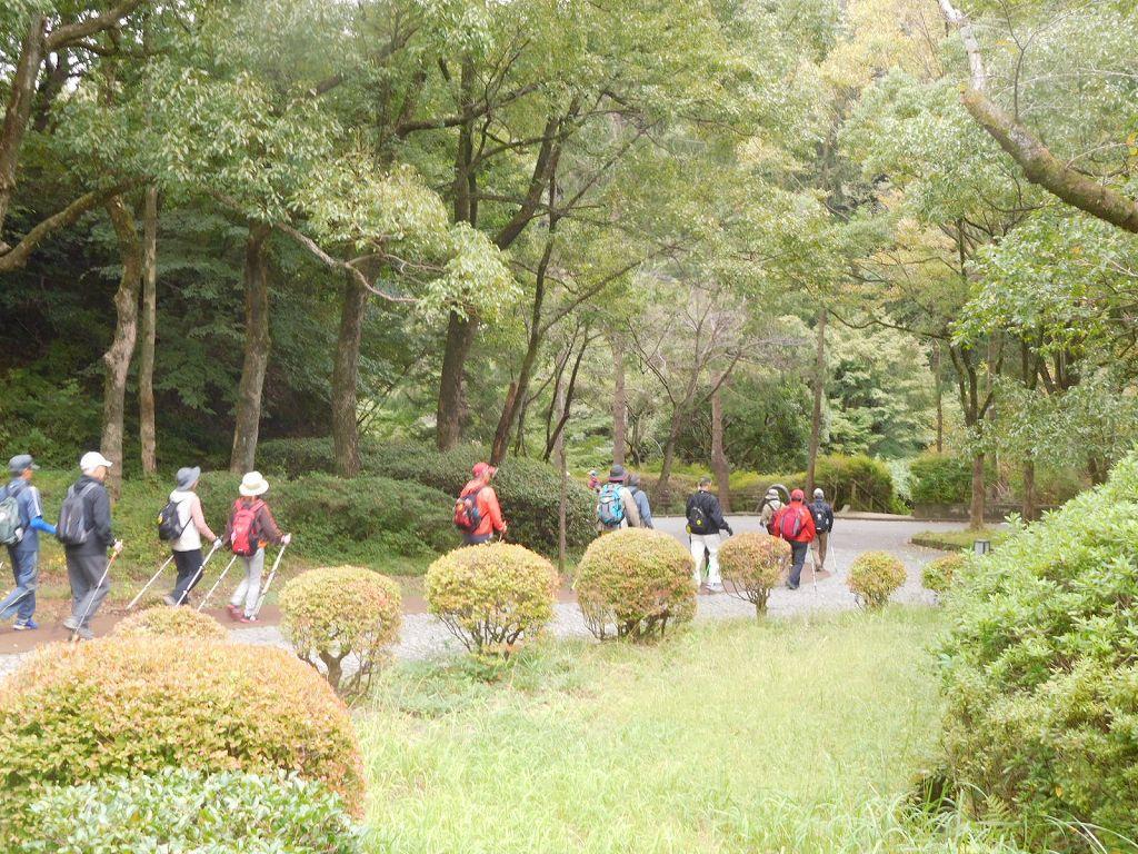 生田緑地の中を歩きます