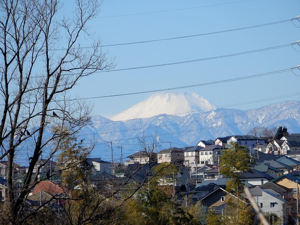 本日2度目の富士山ですが電線が写真の邪魔をしています