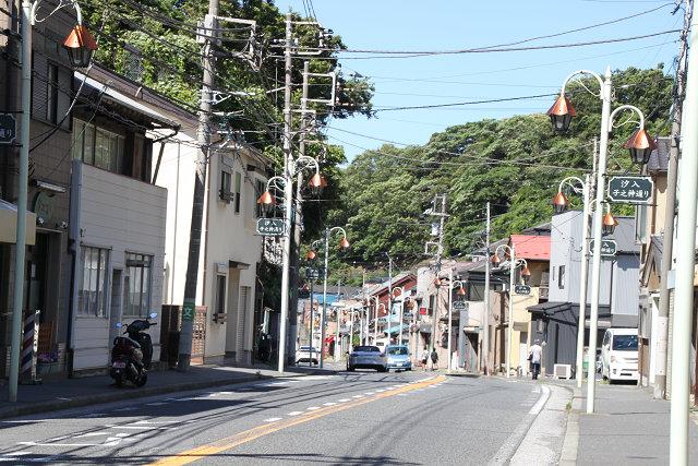 汐入の商店街は銅板葺きの御宅も見えます