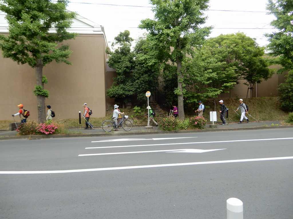 大場町歩道を歩く