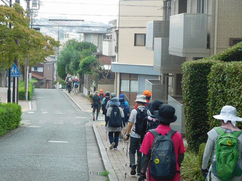 おさかな広場から区役所へ向かう下り坂道