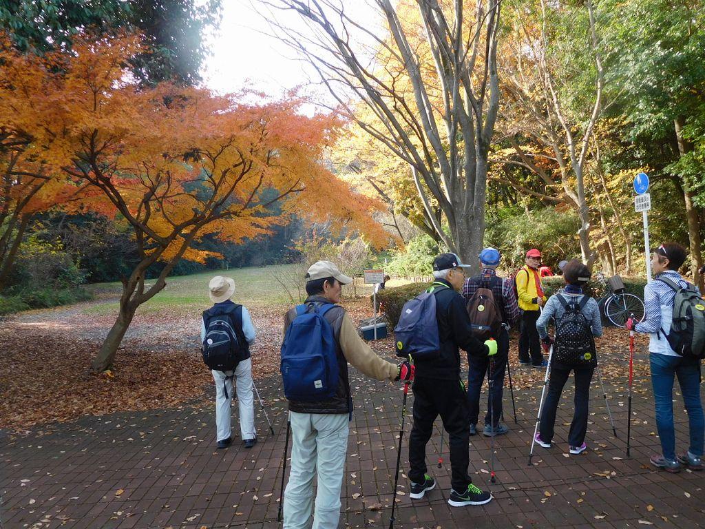 荏田南小学校傍らの鴨池公園の紅葉です