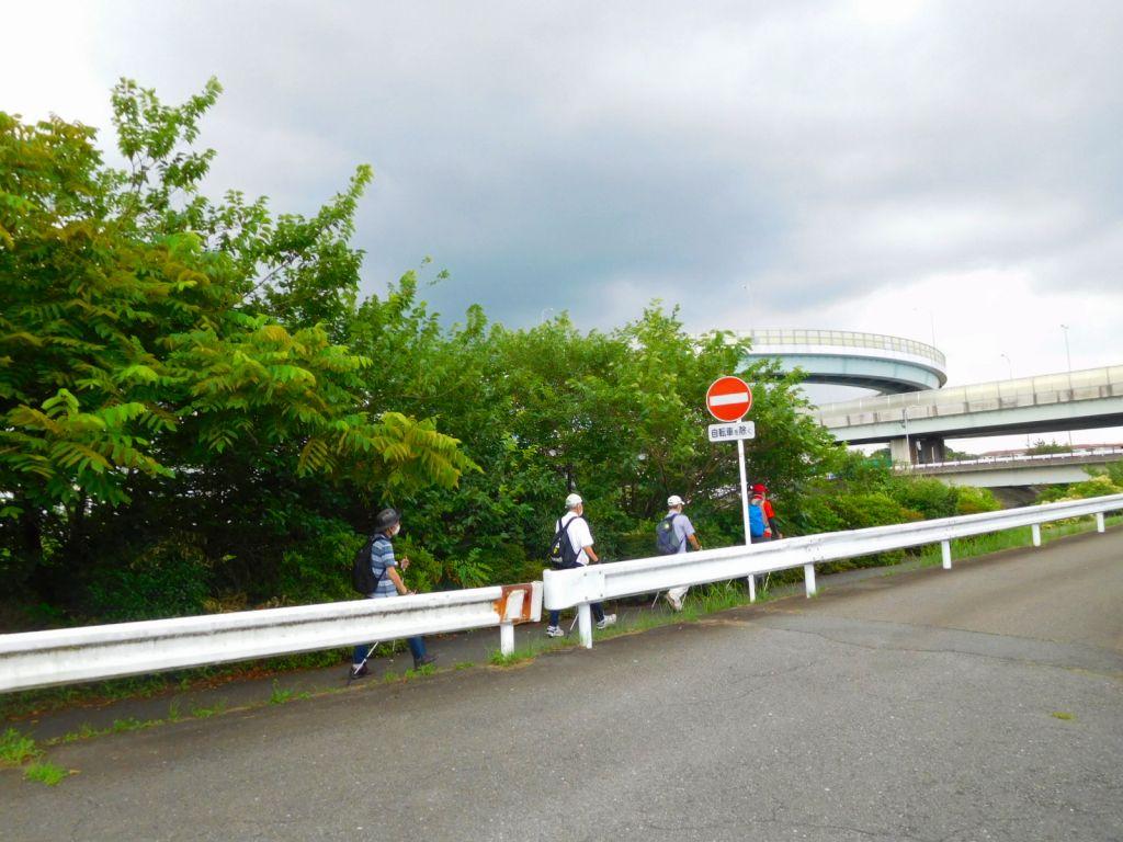 鶴見川に出る