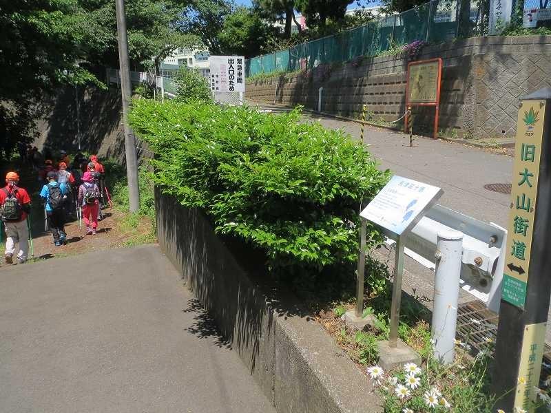 「長坂夜雨」倉沢往還の雰囲気を僅かなりとも伝える旧大山街道