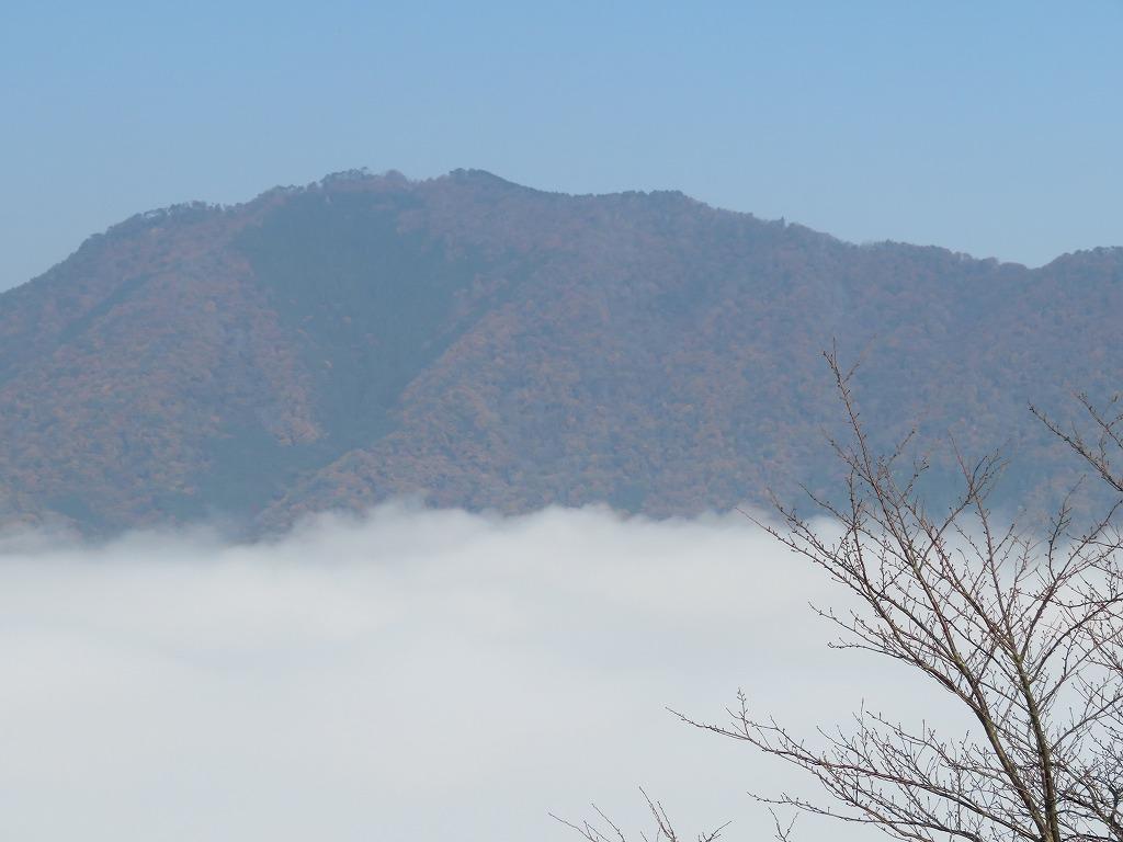 天守から見た立雲峡