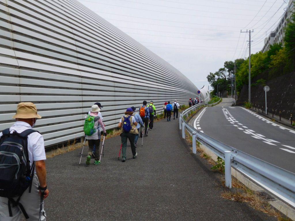 東名高速側道を歩くみなさん