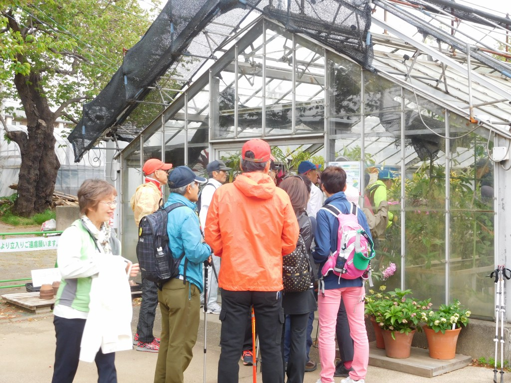 川崎緑化センターでウォーミングアップし花を観賞