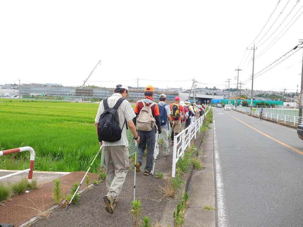 鶴見川から北八朔公園へ  高速道路工事が進んでいます
