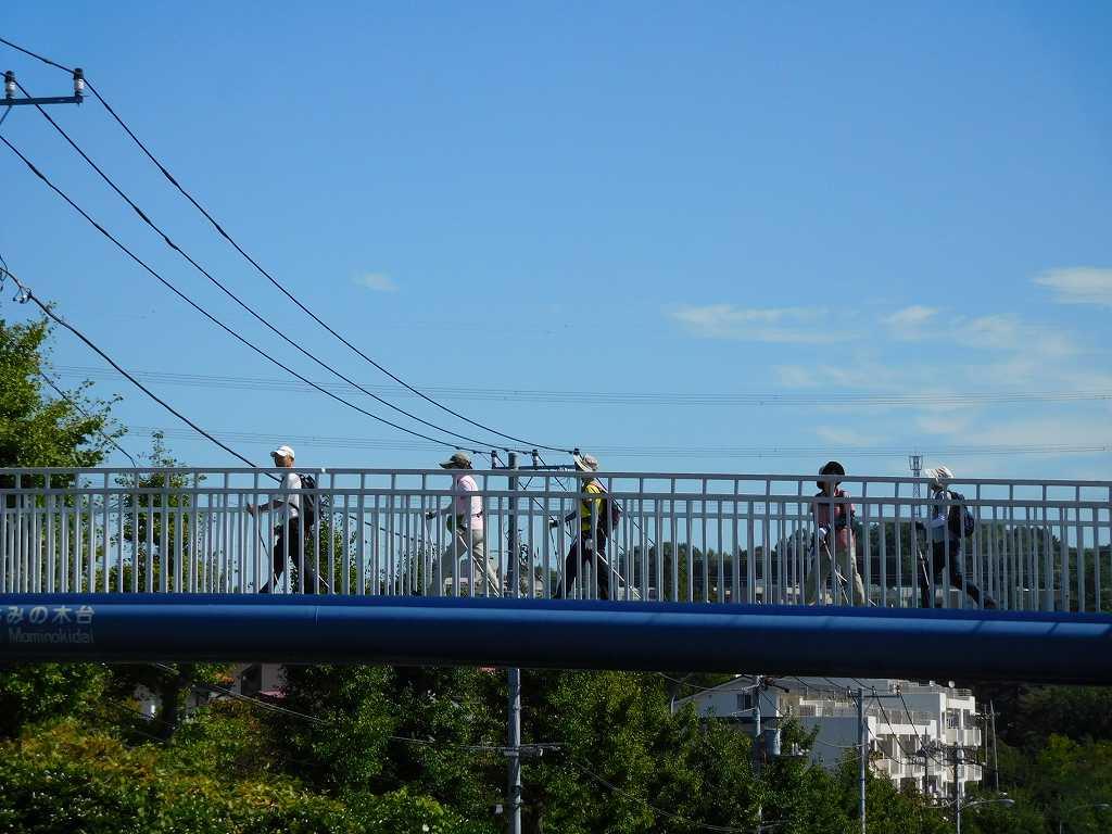真っ青な青空と歩道橋